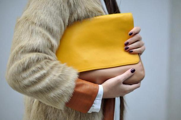 Coat Beige Intrigue Coat Blouse Pants Bag Shoes Jewels cover image